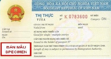 Vietnam-visa-type_business Vietnamese Visa Application Form Sample on insurance form, invitation letter form, job search form, green card form, visa passport, visa application letter, visa invitation form, visa ds-160 form sample, tax form, visa documents folder, work permit form, travel itinerary form, passport renewal form, nomination form, doctor physical examination form,